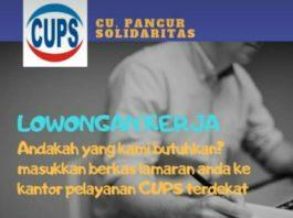 Lowongan Kerja CUPS Ketapang