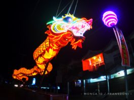 Naga raksasa 'terbang' di jalan A. Yani Ketapang - Kalimantan Barat (Foto : MONGA/FD)